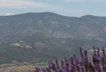 The hills of Provence